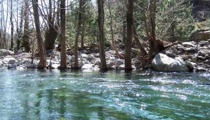 Kazdağı Milli Parkı Gidenlerin Sevdikleri Doğal Bir Ortam