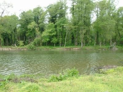 İğneada Saka Gölü Longozu