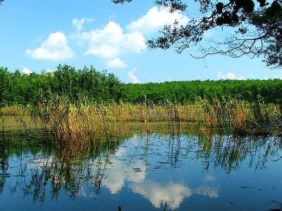 Demirköy Hamam Gölü ve Langozu