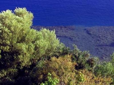 Sövalye Adası Çok Hoş Görünmekte