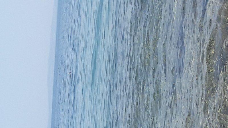 Erikli Sahil Koyları