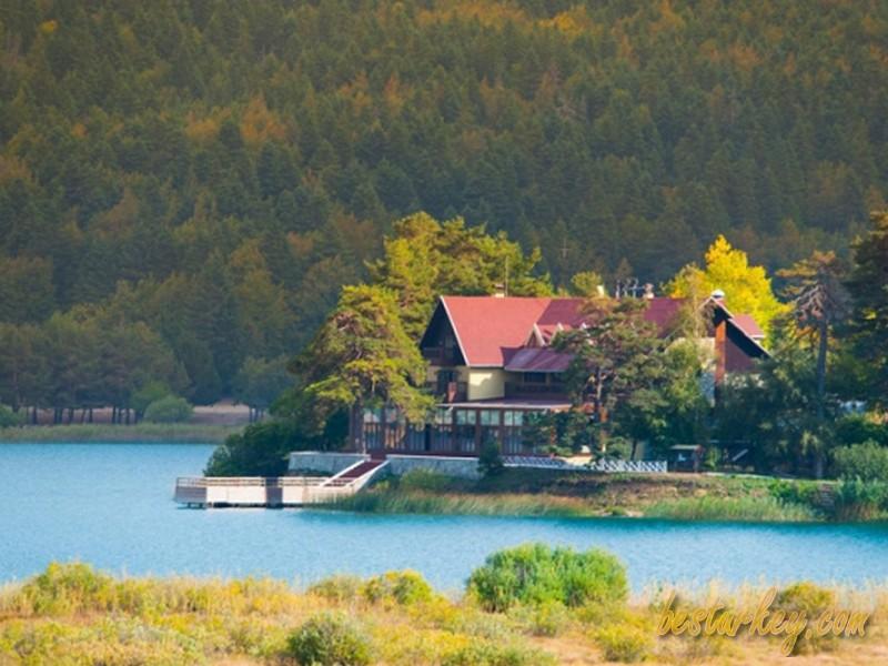 Abant'ta Yaz Manzarası